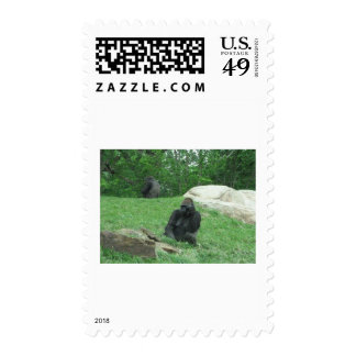 Gorilla pic postage stamps