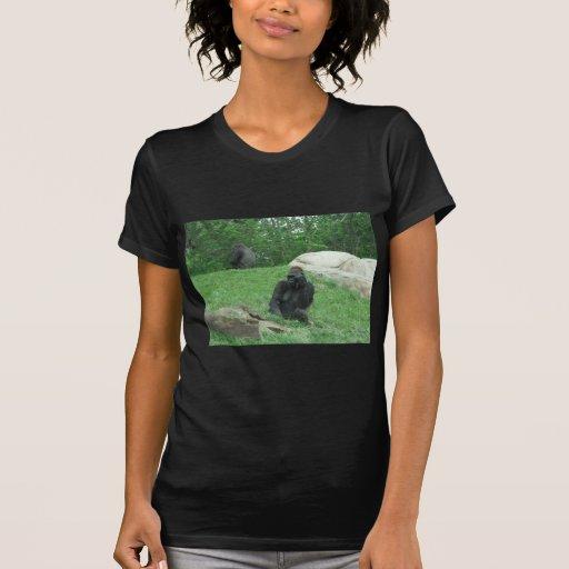Gorilla pic tee shirt