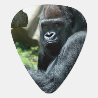 Gorilla Pick