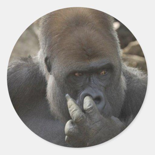 gorilla picking his nose - eeeewwwwwwww! sticker