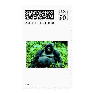 Gorilla Pop Art Postage Stamp