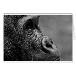 Gorilla Portrait Card