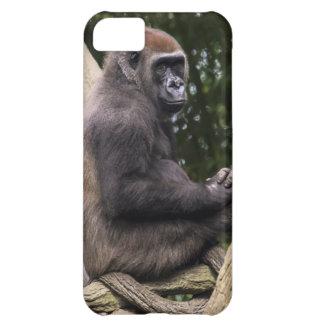 Gorilla Portrait iPhone 5C Covers