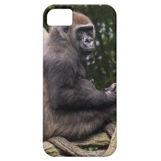 Gorilla Portrait iPhone 5 Covers