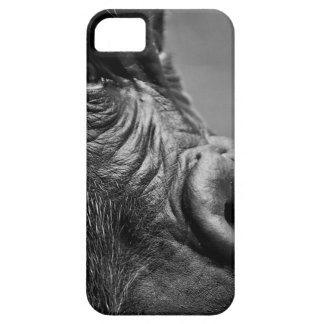 Gorilla Portrait iPhone SE/5/5s Case