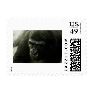 Gorilla Portrait Postage