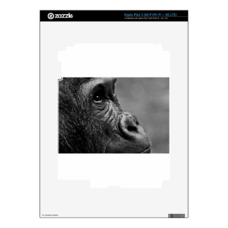 Gorilla Portrait Skin For iPad 3