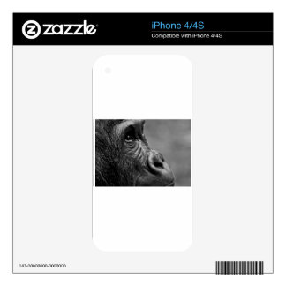 Gorilla Portrait Skins For iPhone 4
