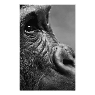 Gorilla Portrait Stationery