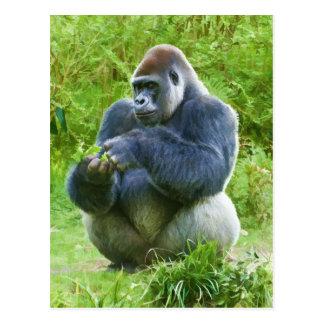 Gorilla Postcard