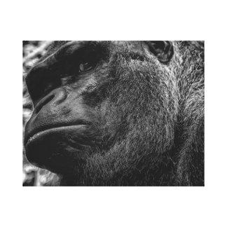 Gorilla Primate Photo in Black White Stretched Canvas Print