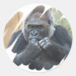 Gorilla Primate Stickers