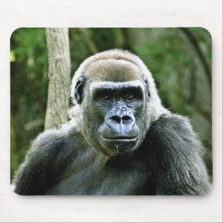 Gorilla Profile Mouse Pad