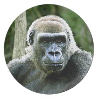 Gorilla Profile Plate