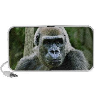 Gorilla Profile Speakers