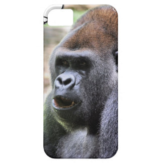 Gorilla say iPhone 5 covers