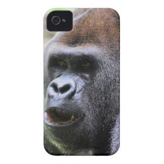 Gorilla say Case-Mate iPhone 4 cases
