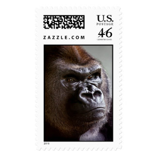 Gorilla Silverback The Boss Stamps