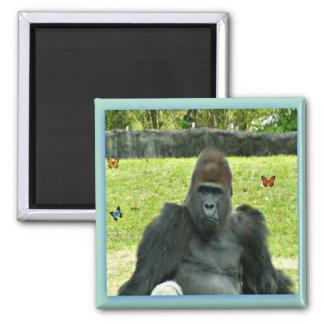 Gorilla Sitting Magnet