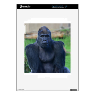 Gorilla iPad 2 Skins