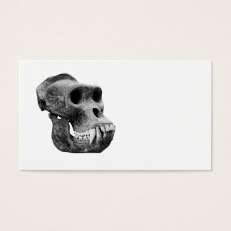 Gorilla skull on a white background. business card