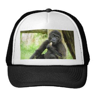 Gorilla Snacking Trucker Hat