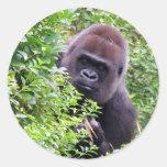 Gorilla Stickers