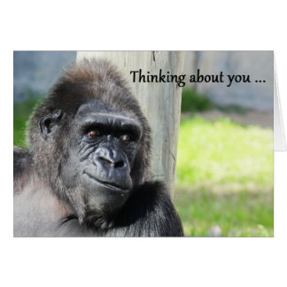 Gorilla Thinking about You Card