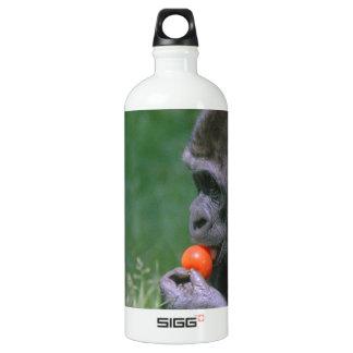 Gorilla Tomato Aluminum Water Bottle