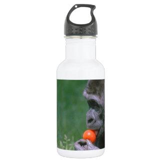 Gorilla Tomato Stainless Steel Water Bottle