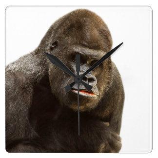 Gorilla wild jungle animal photo square wall clock