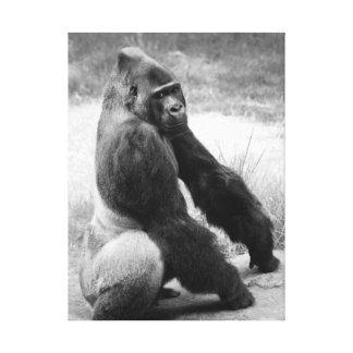 Gorilla Zoo Canvas Black and White Animal Portrait