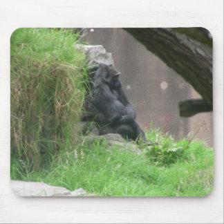 Gorillas 004 Mousepad