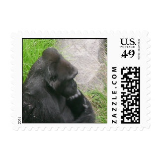 Gorillas 009 Stamp