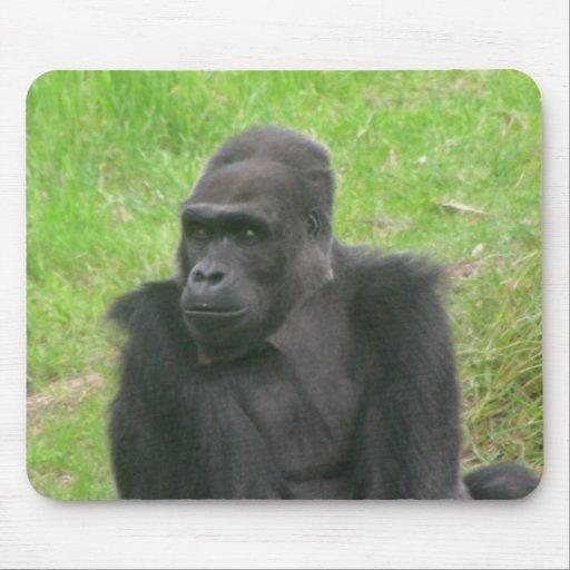 Gorillas 014 Mousepad