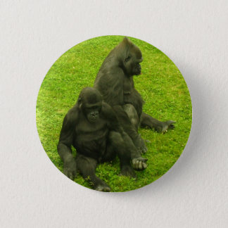 Gorillas of Africa,primates, photography Button