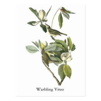 Gorjear un especie de ave, Juan Audubon Postales