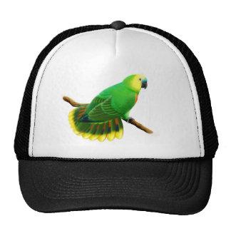 Gorra afrontado azul del loro del Amazonas