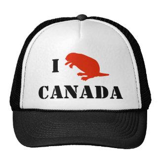 Gorra ajustable del rojo del castor del día de Can