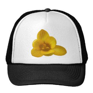 Gorra amarillo del azafrán