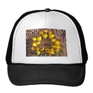 Gorra amarillo del cactus
