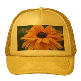 Gorra amarillo glorioso de la margarita