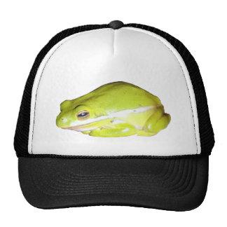 Gorra americano verde del camionero de la rana arb
