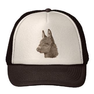 Gorra animal del arte del burro del realista lindo
