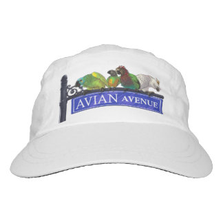Gorra aviar del foro del loro de la avenida gorra de alto rendimiento