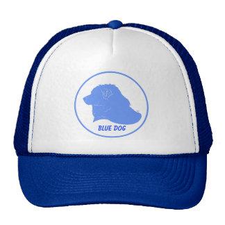 Gorra azul de Demócrata del perro