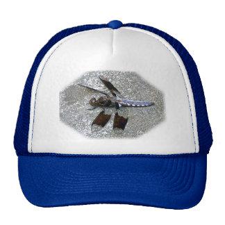 Gorra azul de la libélula