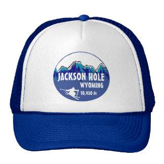 Gorra azul del arte del esquí de Jackson Hole Wyom