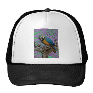Gorra azul del loro y de las palmas