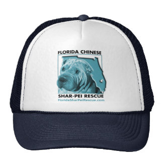 Gorra azul del vintage de FSPR